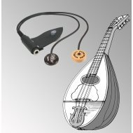 Peterman - dual external -  mandolin pickup
